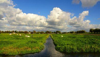 onbebouwde polder