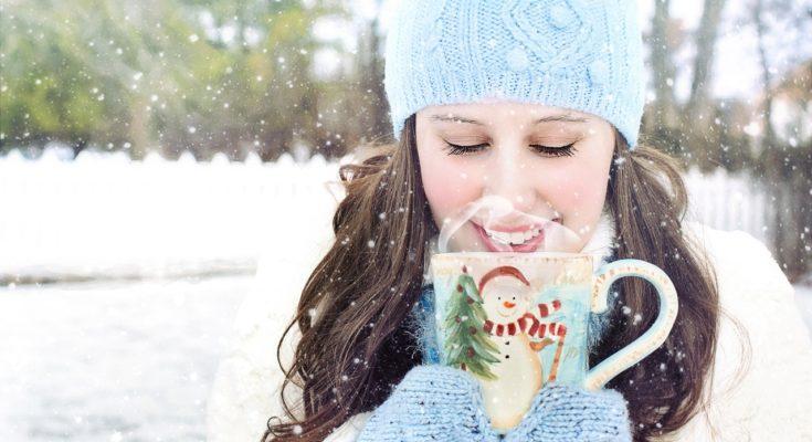 hoeve rijlaarsdam winterexpositie