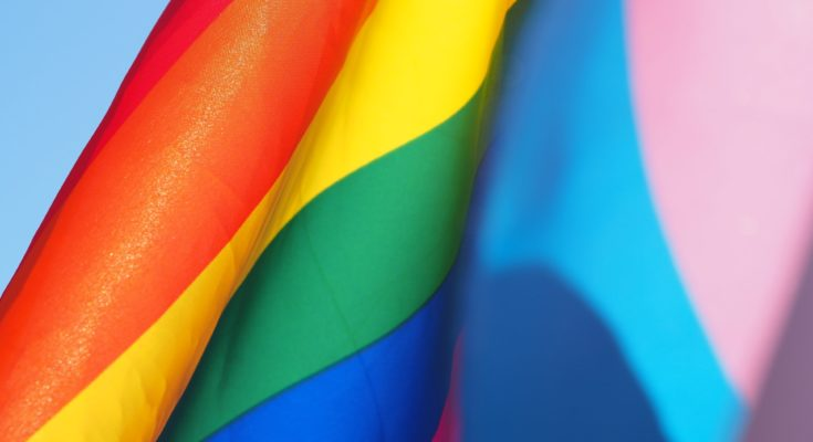 regenboogvlag gemeentehuis nieuwkoop