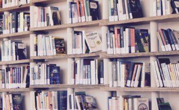 corona bibliotheek rijn en venen