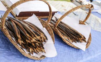 paling gebroeders hoogerwerf nieuwkoop