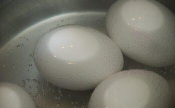 pannetje eieren koken