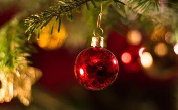 kerstwens de nieuwkoper 2020